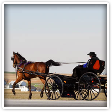 Amish Buggy Rides near Elk Forge Bed and Breakfast