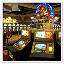 hollywood casino Cecil County & Newark
