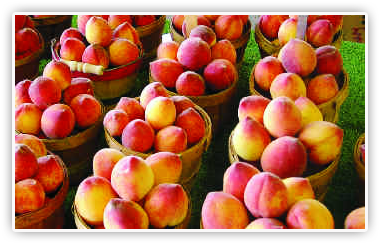 peach festival July Newsletter 2012