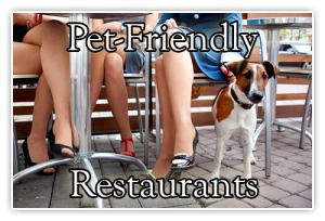 pet friendly restaurants near elk forge inn