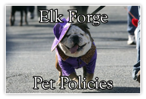 pet policies at elk forge inn