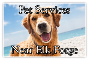 pet services near elk forge inn